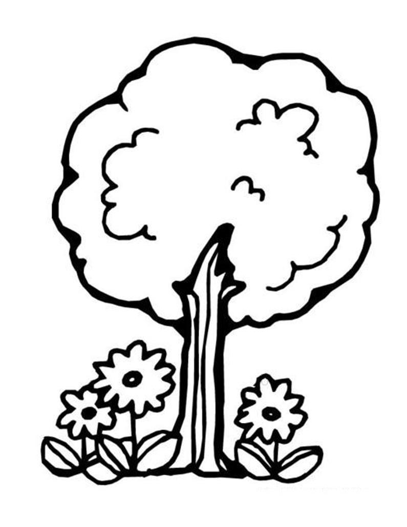 Alberi 6 disegni per bambini da colorare for Foto di alberi da colorare