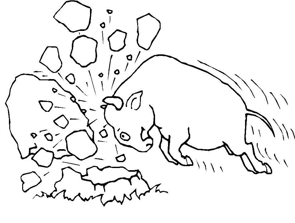 Animali fattoria 11 disegni per bambini da colorare for Fattoria immagini da colorare
