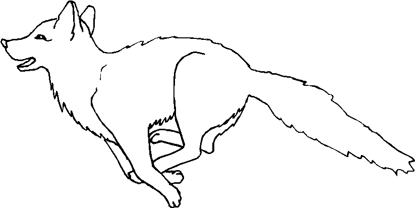 Animali foresta 20 disegni per bambini da colorare for Disegni da stampare e colorare di cani