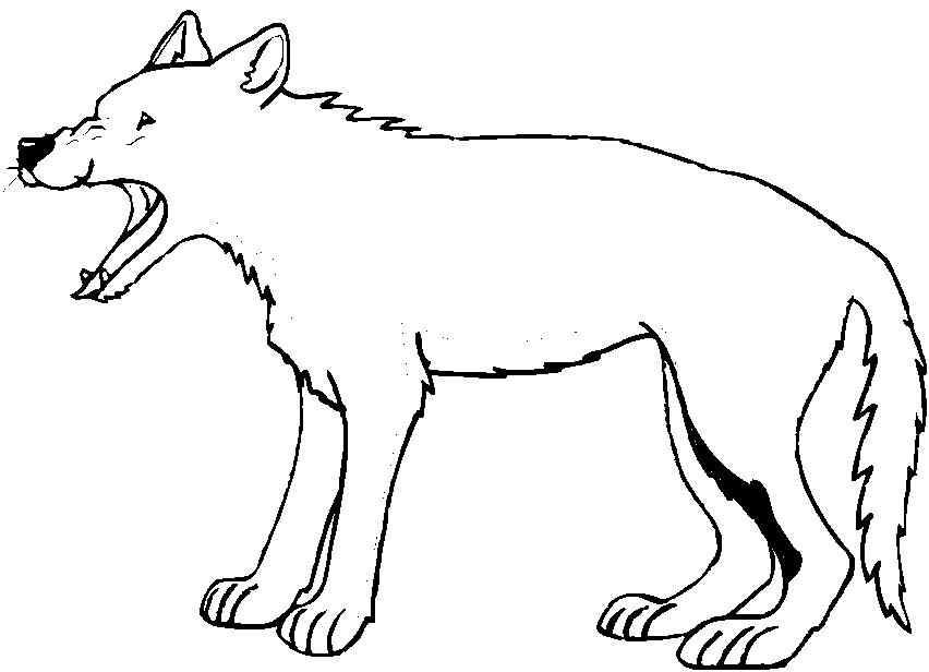 Disegni animali della foresta car interior design for Disegni da colorare animali della foresta