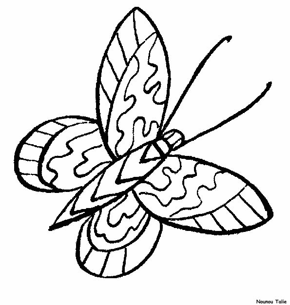 Farfalle 5 disegni per bambini da colorare for Cip e ciop immagini da colorare