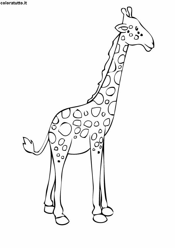 Giraffa 2 disegni per bambini da colorare for Immagini giraffa per bambini