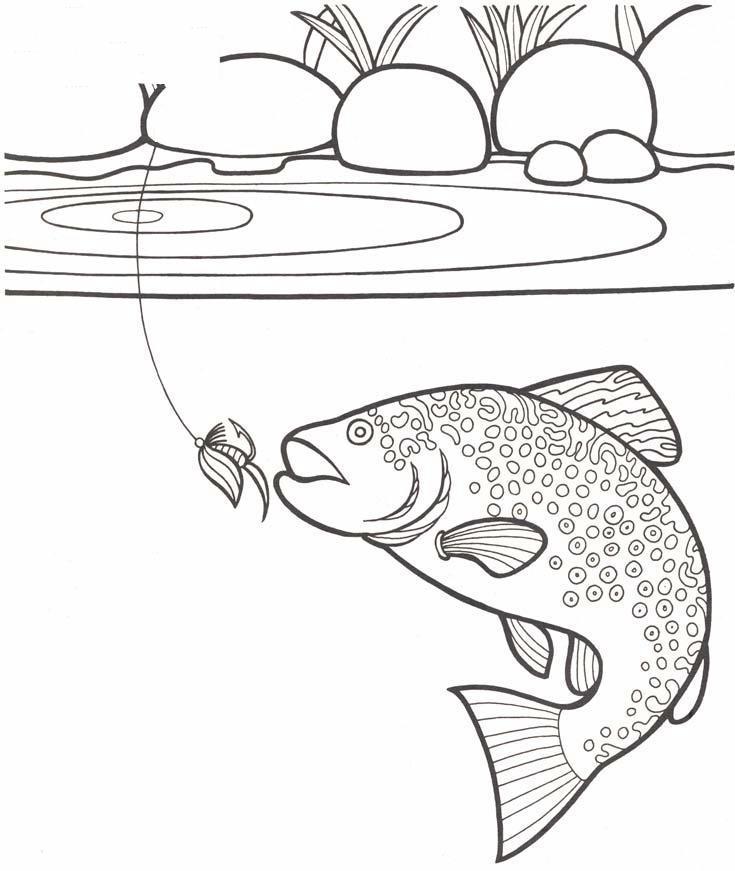 Elegante disegni da colorare pesci per bambini migliori for Disegni di pesci da colorare e stampare