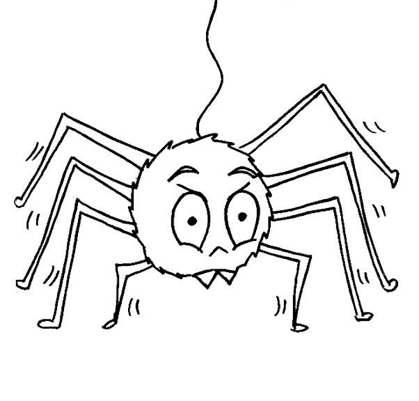 Ragni disegni per bambini da colorare - Immagini del ragno da stampare ...