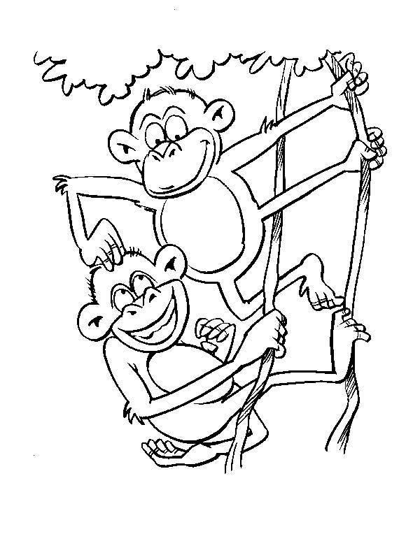 Scimmie 3 disegni per bambini da colorare - Ragazzi da colorare in immagini ...